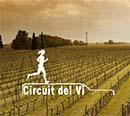 circuit del vi